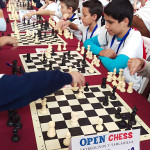 openchess7