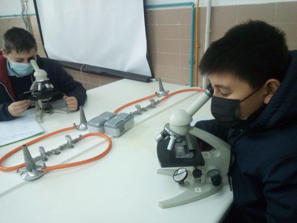 Prácticas de laboratorio en Altair